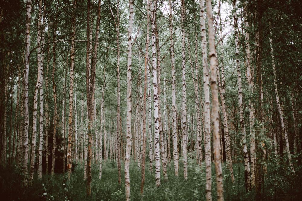 Finland20130622_0009.jpg