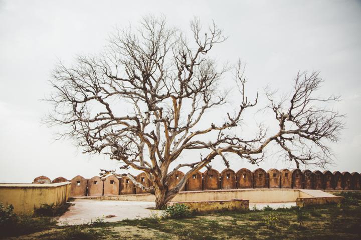 Jaipur_Marianna Jamadi-19