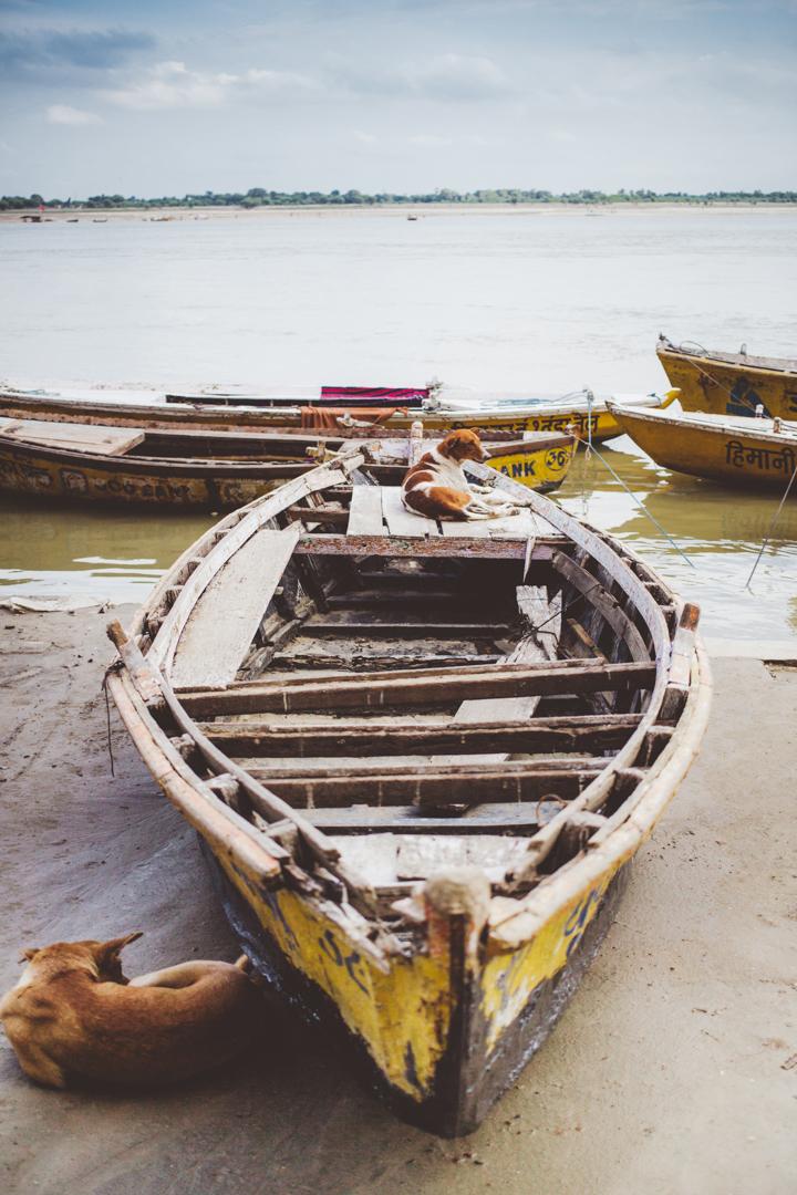 Varanasi_Marianna_Jamadi_40