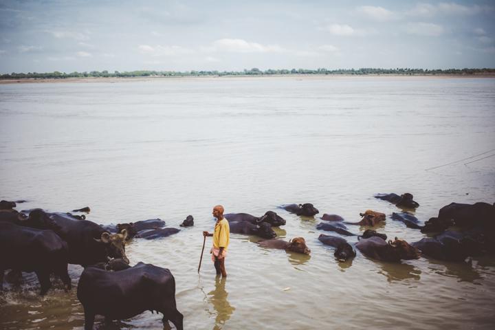 Varanasi_Marianna_Jamadi_42