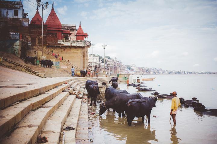 Varanasi_Marianna_Jamadi_43