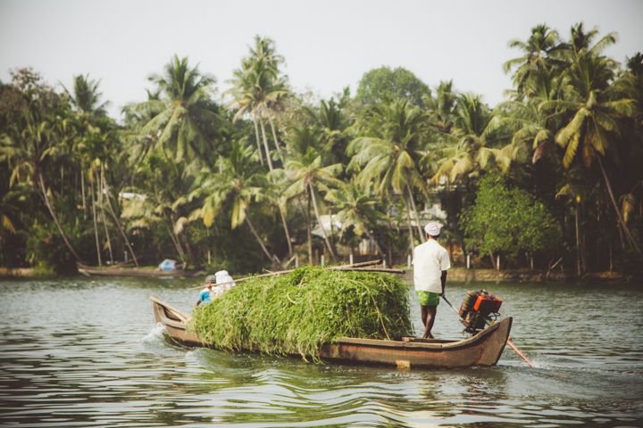 Kerala Backwaters_26