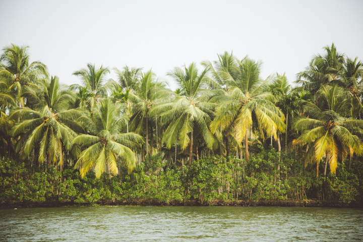 Kerala Backwaters_30