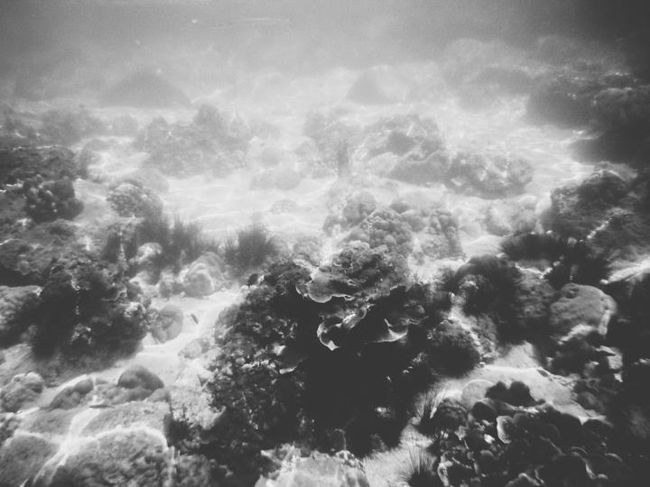 Snorkeling_Koh_Lipe_15
