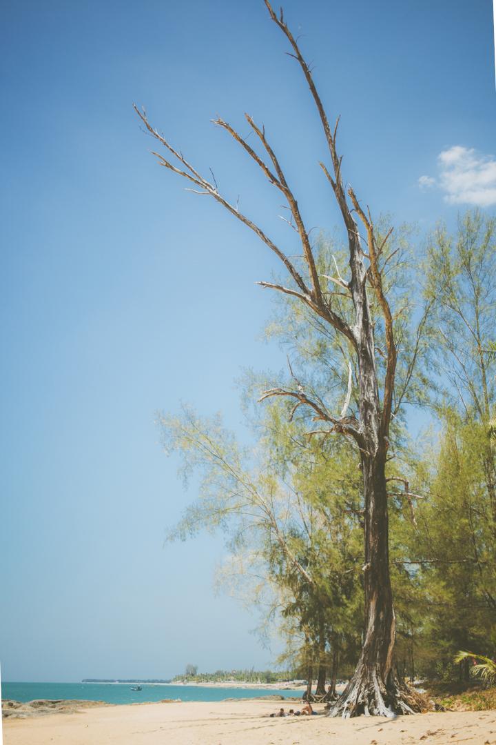 KHAO_LAK_5