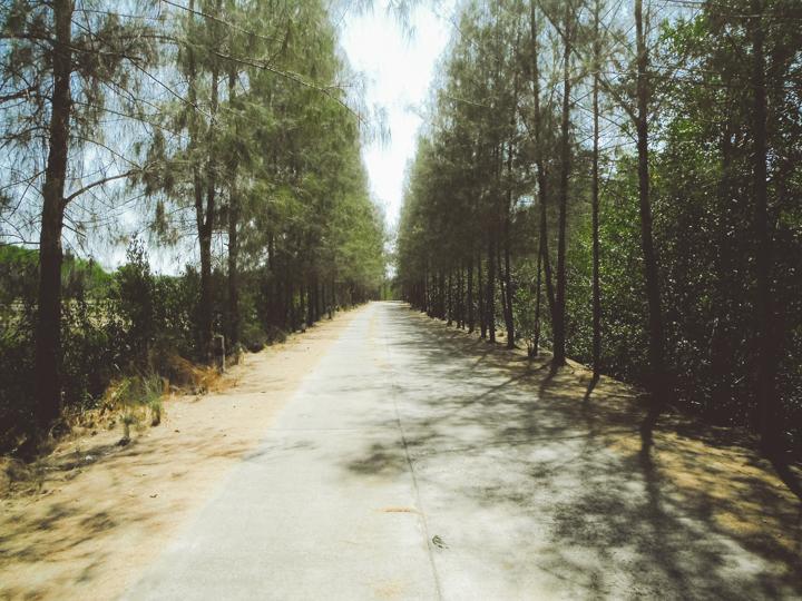 Koh_Yao_Noi_14