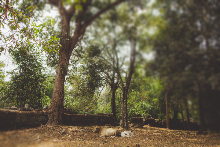 AngkorWat_15