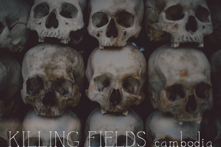 KillingFields_1.1