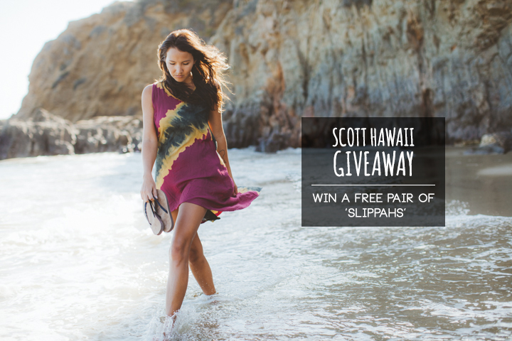 SCOTT_HAWAII_1
