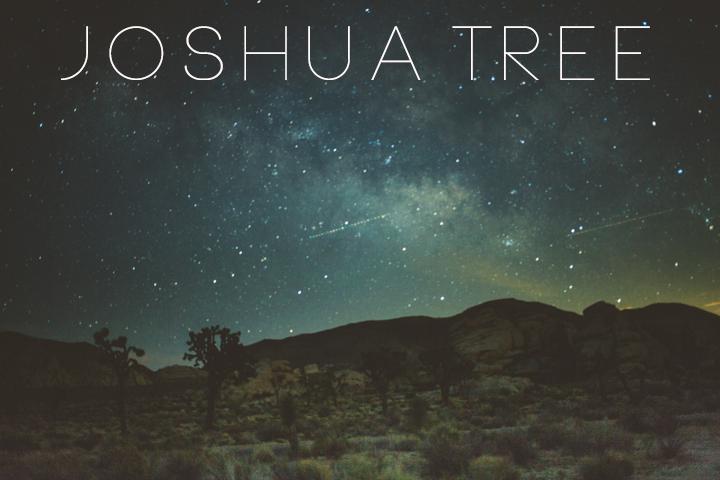 JOSHUA_TREE_1