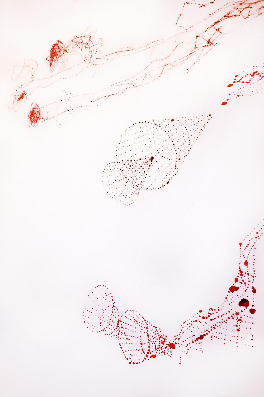 Vermilion Large Drawing, 2014 - detail.