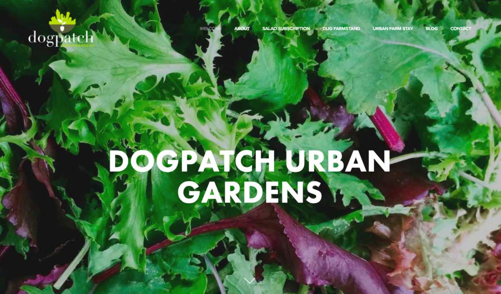 Jenny's  Dogpatch Urban Gardens  website