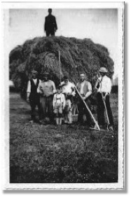 Cattle farming has been a Jakobs family business starting in the Netherlands in the 1800's.