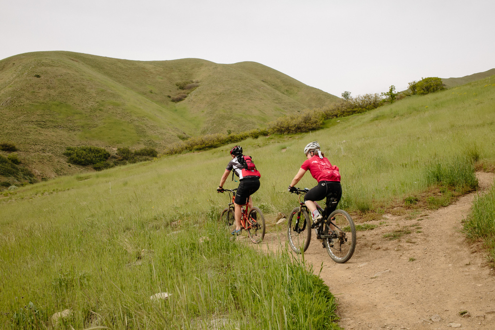 The foothills are close at hand, with miles of dog-friendly trails for hiking and biking.