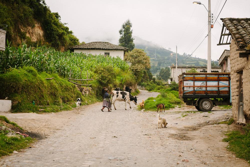 Ecuador2011_Mountains&Sea_Web_jenniferleahy-039.jpg