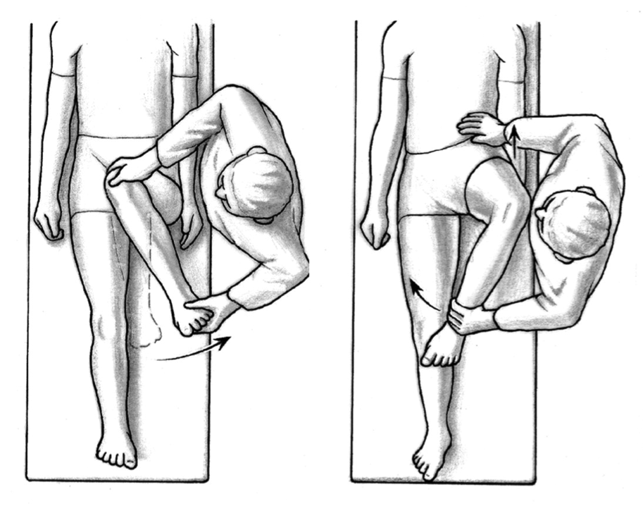 What S The Deal With Hip Internal Amp External Rotation