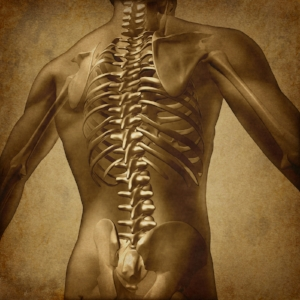 PART 4: Most Common Myths Of Low Back Pain -