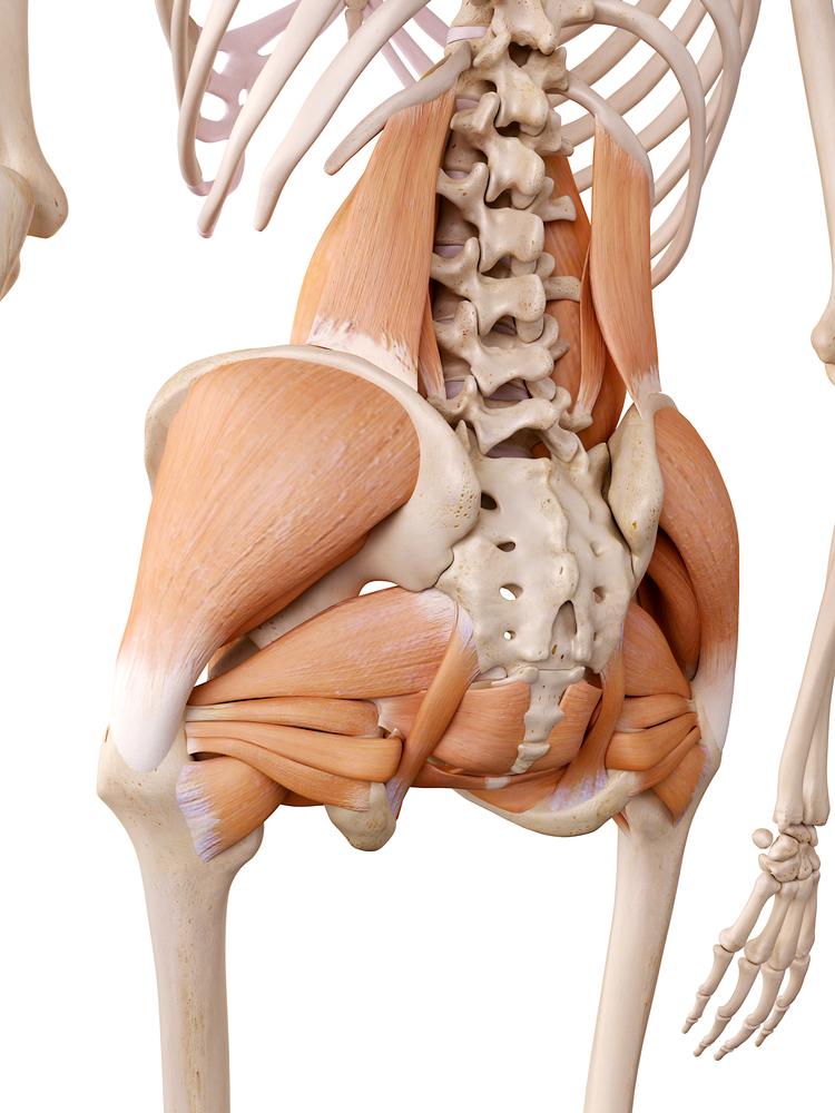 Sciatica_Relief_Piriformis_Sandy_Utah_Sports_Chiropractor.jpg