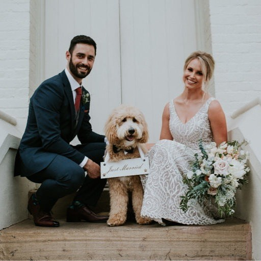 Keeping the pets at weddings theme going..... Looking back at that time when @rufusthegroodle stole the limelight from his pawrents (Stephanie & Matt) @stephabell : : : : Image @redtentphotographyandfilm #thebellabloomco #thebeautifulflowercompany #rufusthegroodle #groodle #petsatweddings #highchurch #brisbaneweddingflorist #weddingfloristbrisbane #justmarried #dogsofinstagram