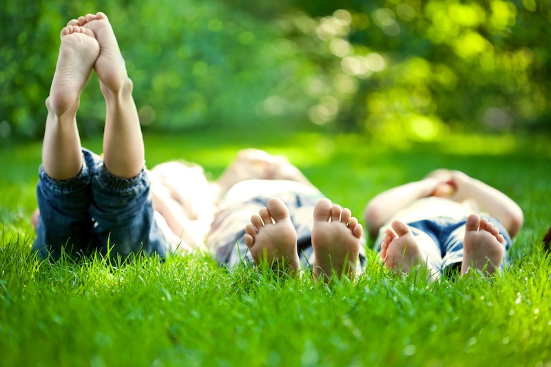 Top 10 Tips for a Great Organic Lawn | Lawn Care Tips | Landscaping Blog | Hillside Landscaping Co. | Berlin, CT