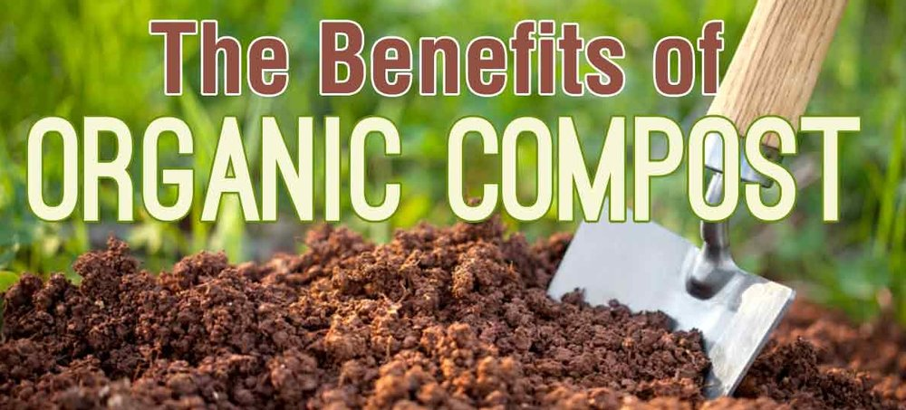 Hillside Landscaping Organic Compost Benefits