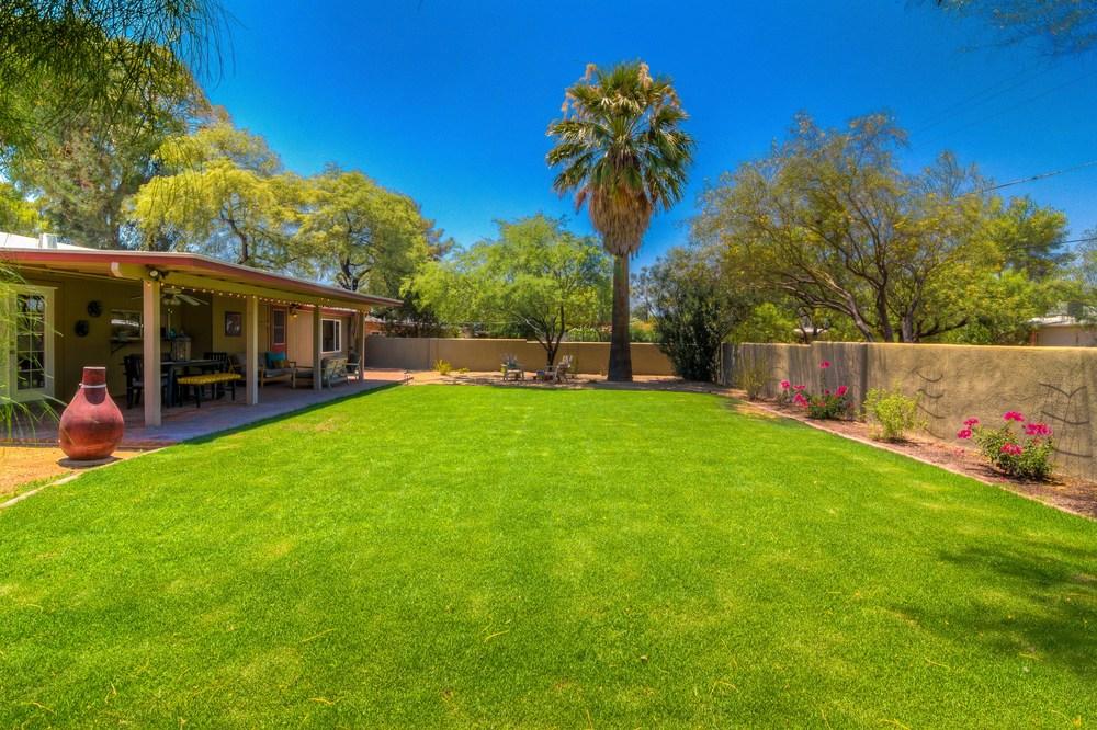 43 Backyard photo b.jpg
