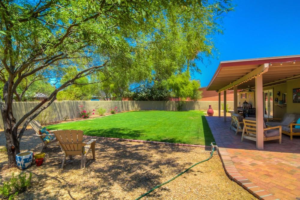 46 Backyard photo e.jpg