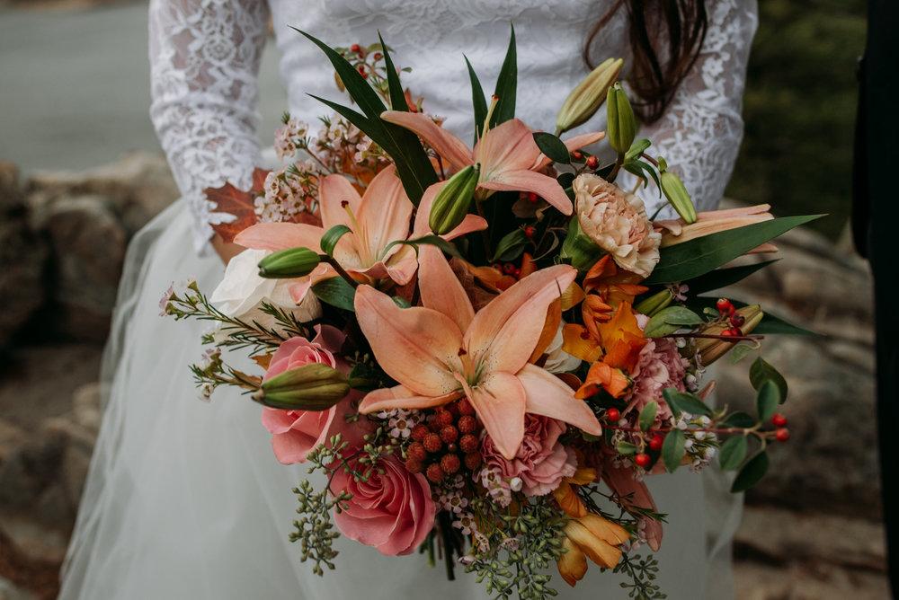 wild_earth_weddings_colorado_elopement_photographer_dogs_rocky_mountains-13.jpg