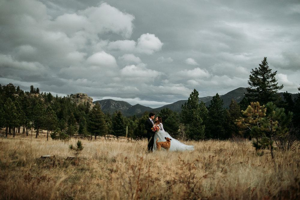 wild_earth_weddings_colorado_elopement_photographer_dogs_rocky_mountains-40.jpg