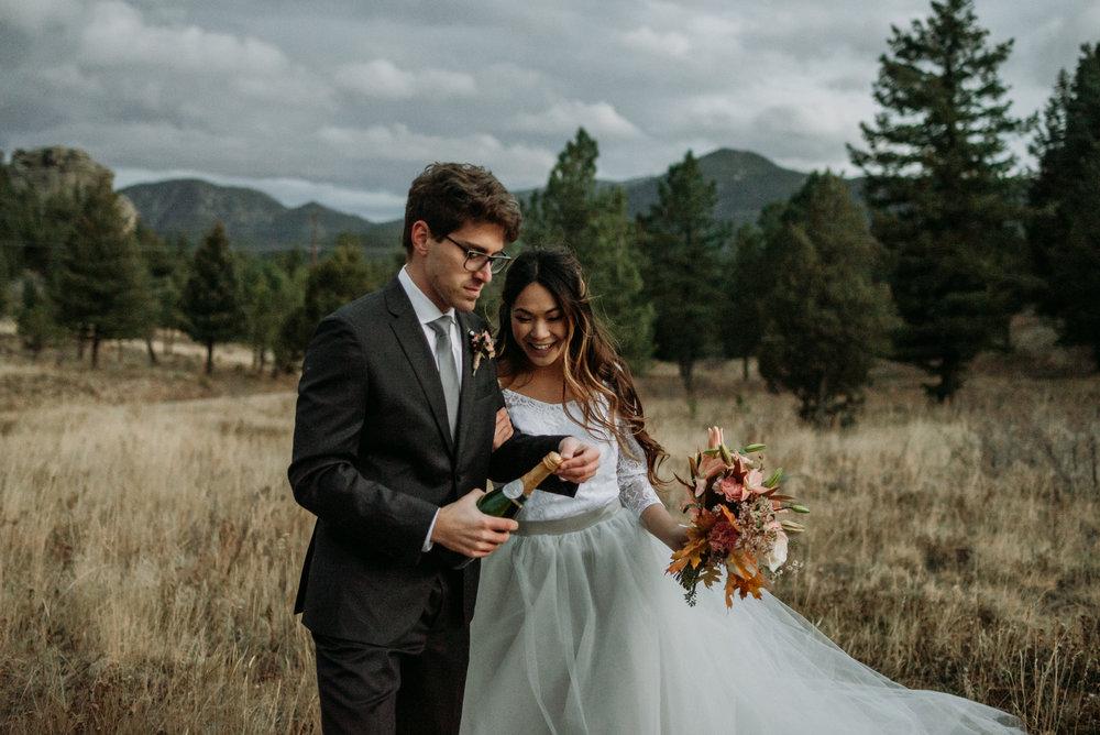 wild_earth_weddings_colorado_elopement_photographer_dogs_rocky_mountains-42.jpg