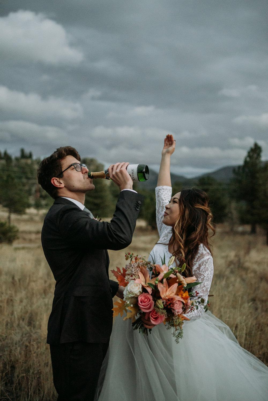 wild_earth_weddings_colorado_elopement_photographer_dogs_rocky_mountains-49.jpg