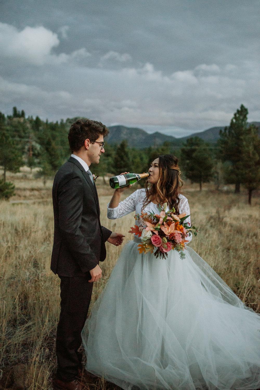 wild_earth_weddings_colorado_elopement_photographer_dogs_rocky_mountains-50.jpg