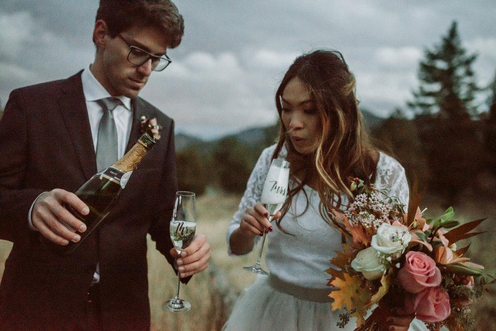 wild_earth_weddings_colorado_elopement_photographer_dogs_rocky_mountains-53.jpg