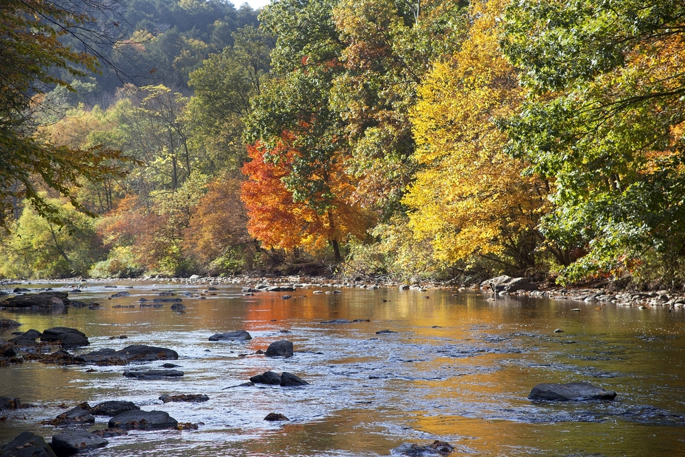 Shepaug River.jpg