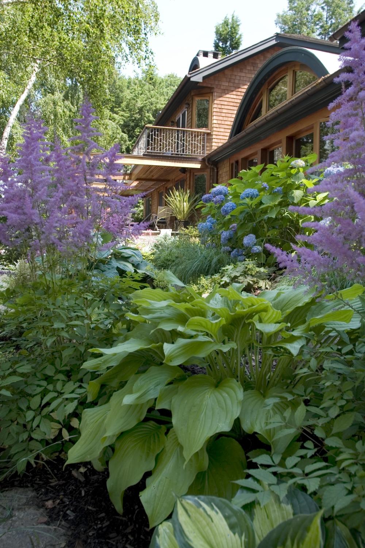 garden_10.jpg