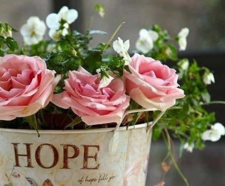 Art Flower roses bucket 0888951_818426171528047_4118312942902367736_n.jpg