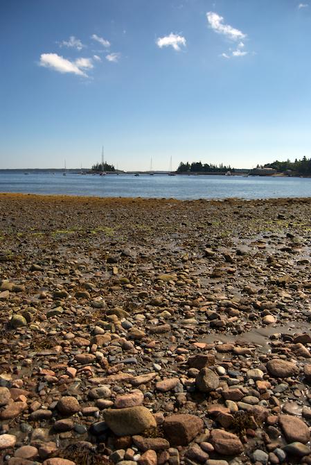 Maine-trip-day4-Naomi-VanDoren 4