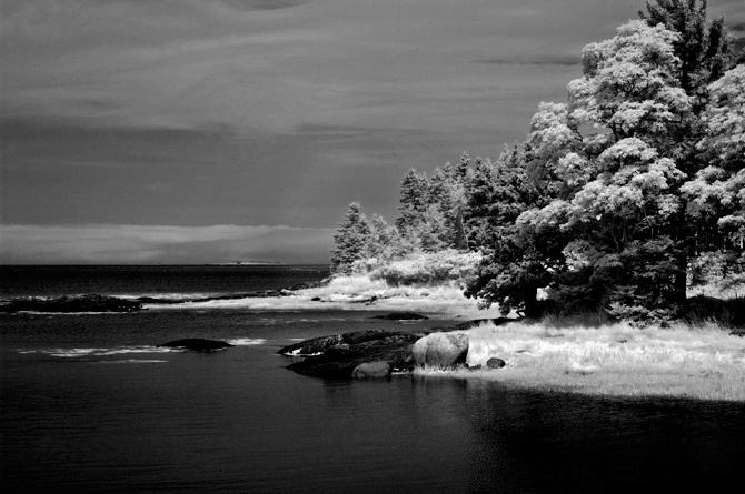 Maine-trip-day5-Naomi-VanDoren-10