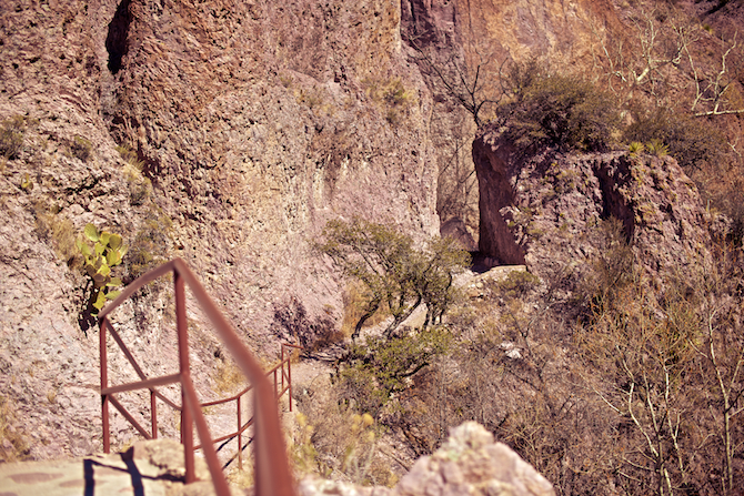 Catwalk-Canyon-Gila-National-Forest-Park-New-Mexico-naomi-vandoren 9
