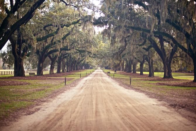 Boone-Hall-Plantation-Naomi-VanDoren 15