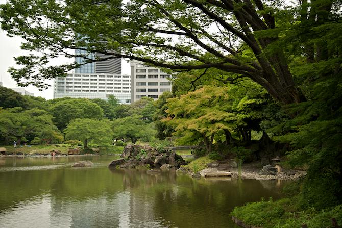 Koishikawa Korakuen Gardens, Tokyo Japan | NaomiVanDoren.com