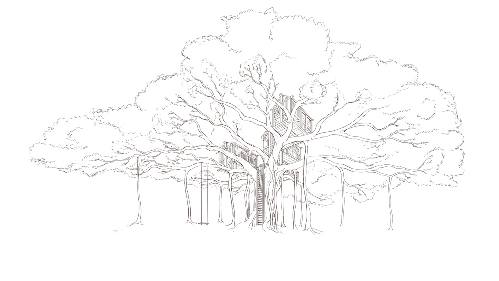 Line Drawing Tree : Banyan treehouse concept — naomi vandoren