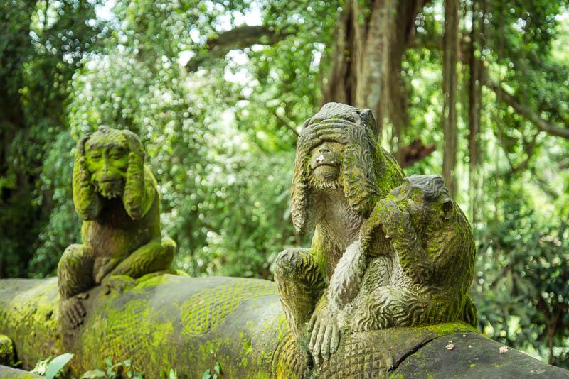 Ubud-Moneky-Park-Indonesia-Naomi-VanDoren-19.jpg