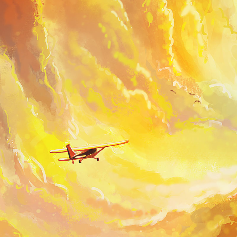 Flying-Home-Naomi-VanDoren-detail1.jpg