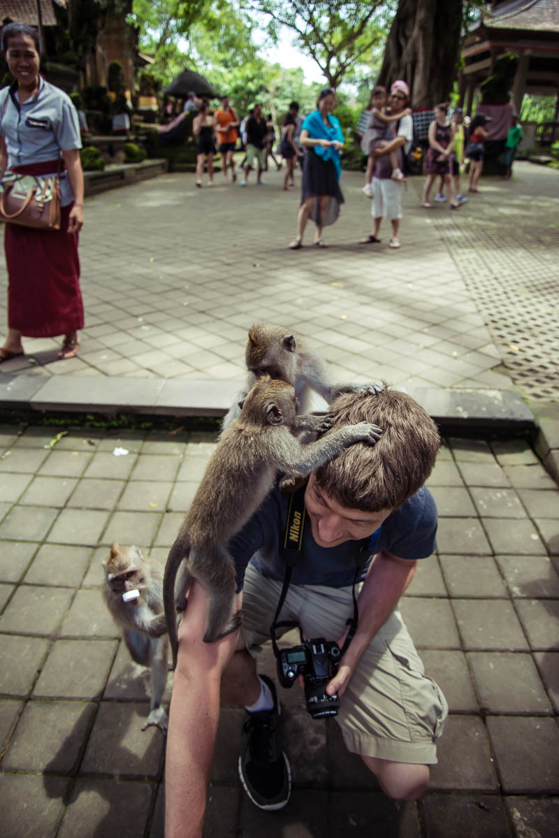 Ubud Moneky Park Indonesia Naomi VanDoren-21.jpg