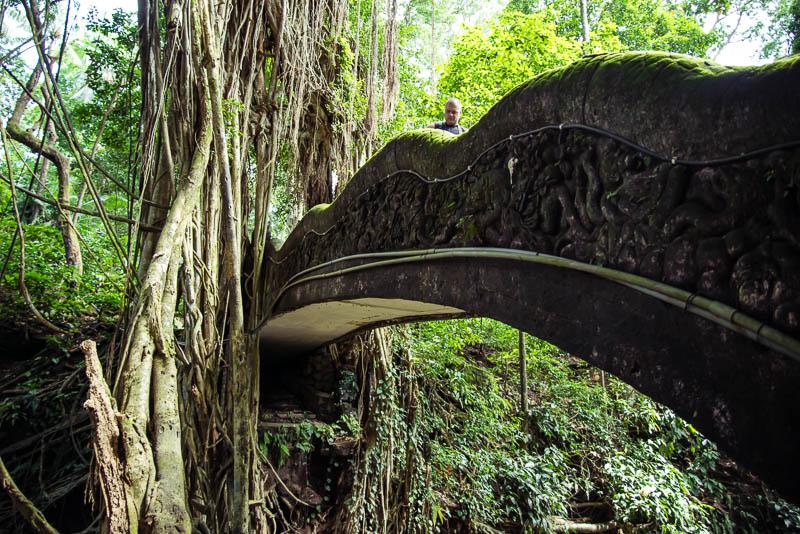 Ubud Moneky Park Indonesia Naomi VanDoren-32.jpg