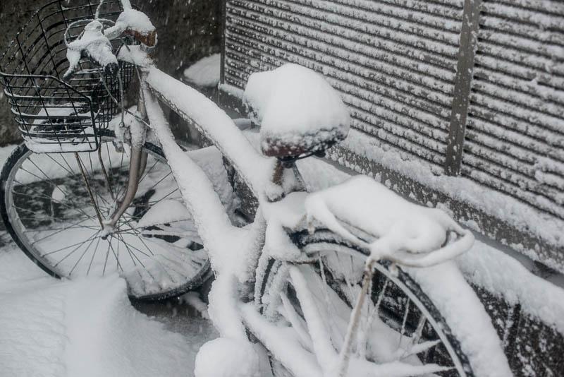 Snow Day Japan Naomi VanDoren-9.jpg