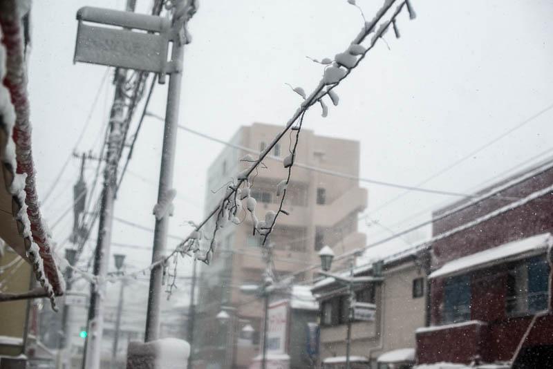 Snow Day Japan Naomi VanDoren-12.jpg