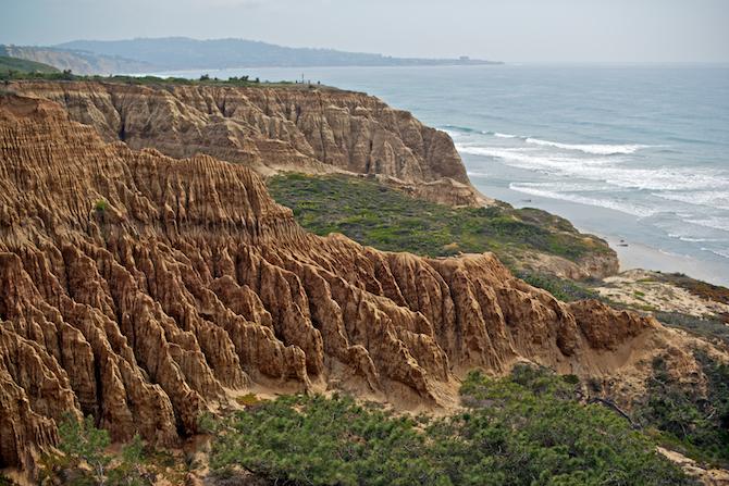 Torrey-Pines-State-Park-San-Diego-CA-Naomi-VanDoren 2.jpg