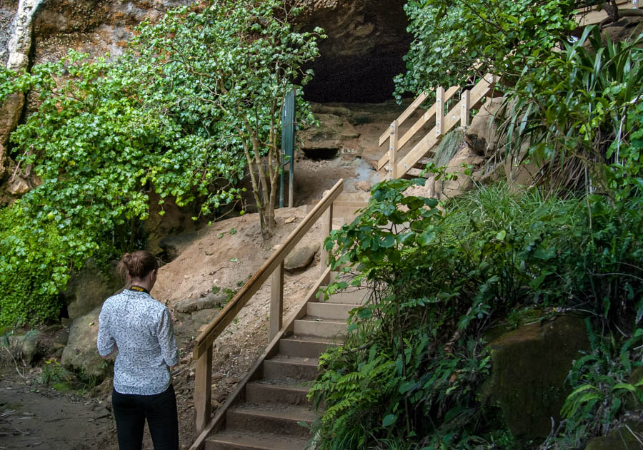 Naomi VanDoren New Zealand Travel Day 4 punakaiki cavern